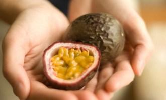 Всё про маракуйю: что это за фрукт и как его есть