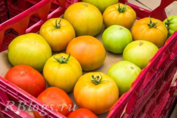 Красные и зеленые помидоры в ящике