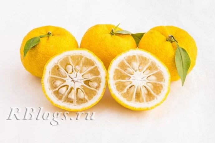 На фото целые плоды юдзу и в разрезе